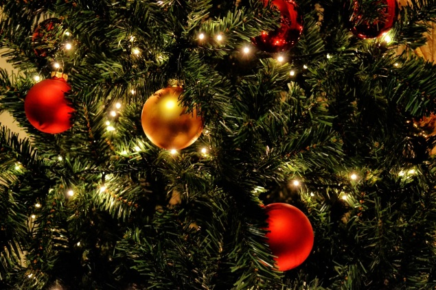 tree-branch-winter-glowing-home-celebration-598441-pxhere.com (1)